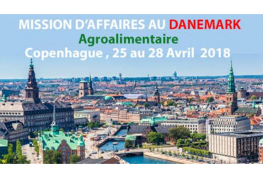Mission d'affaire au Danemark